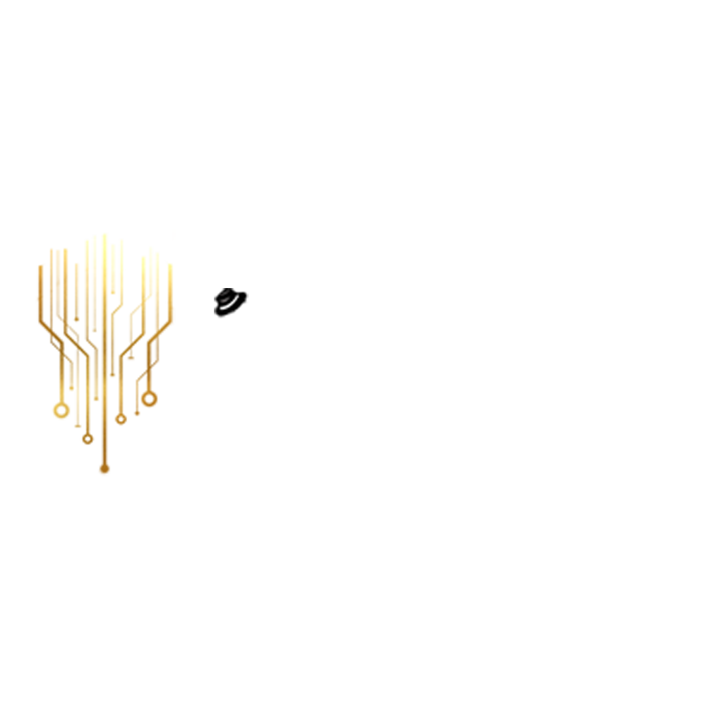 Padroni IT Solutions